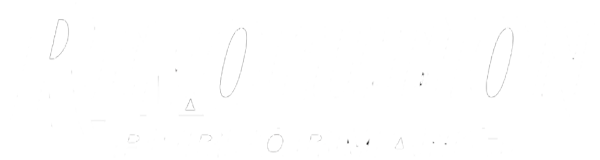 Revolution Performance Logo